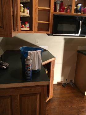 cleaning cabinets with ammonia
